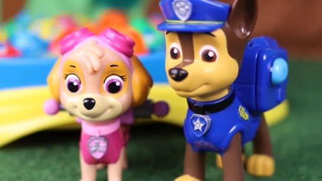 光棍影院巡逻狗狗们玩的超级开心,你想和大家一起玩吗?