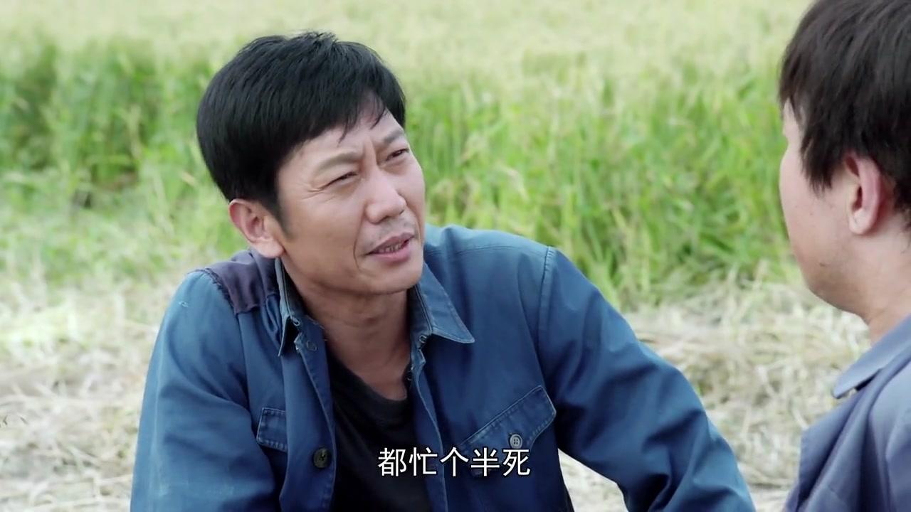 【兰桐花开】宋老三偷懒不肯收割麦子