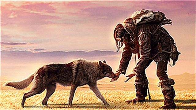 【阿尔法:狼伴归途】开局口碑佳 具少年派气质