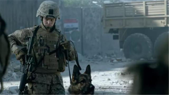 【战犬瑞克斯】利维做诱饵 遭凶猛军犬攻击受伤