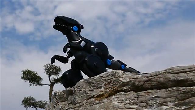 【1001个玩意儿】动物世界的机器恐龙也有春天