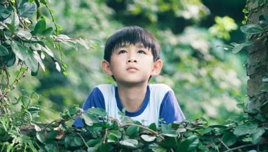 【西小河的夏天】釜山获奖首曝预告 开启国际电影节之旅