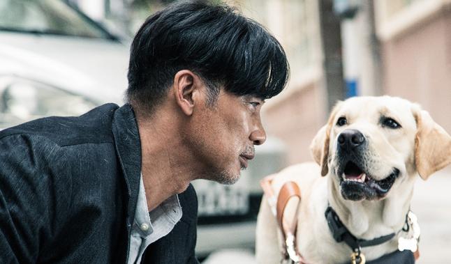 【小Q】导盲犬养成记