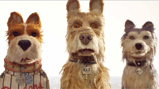 【犬之岛】今日亮相北影节好莱坞巨星幕后配音为影片保驾护航