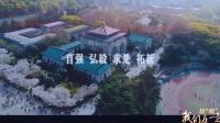 """战""""疫"""",我们在一起 武汉大学篇"""