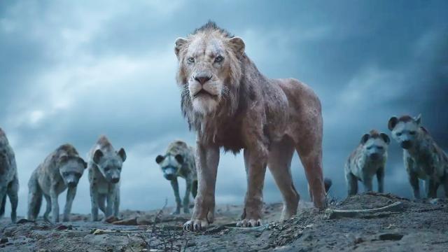 狮子王重出江湖,预告首发2.25亿次播放量,仅次于复联